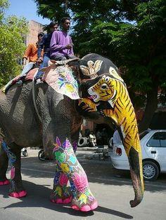 Paseando por las calles de Jaipur...