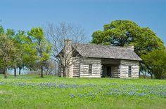 Texas homestead