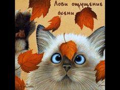 Кошки- лови ощущение осени