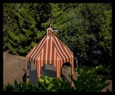 """Included on the blog """"A Therapist's Thoughts""""  Edible Tent Dress listed on this blog. www.therapiststhoughts.blogspot.com/"""