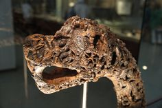 This dragon-head post was found in the Oseberg Viking Ship when it was discovered inside a burial mound at the Osberg farm near Tønsberg in Vestfold County, Norway. Scholars believe the ship was buried around 834 AD.  It was excavated between 1904-05. The ship, and the post, are now part of the collections at the Viking Ship Museum located on Oslo's beautiful Bygdøy Peninsula. Scholars are not sure about the purpose of this dragon-head post.