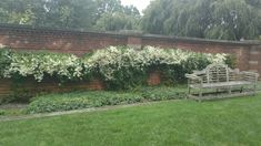 Fall blooming clematis Old Westbury Gardens, Clematis, Bloom, Cabin, House Styles, Fall, Plants, Home Decor, Autumn
