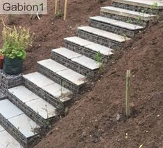 gabion steps with paving slabs for treads http://www.gabion1.co.uk