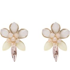 OASIS Flower Studs ($9.26) via Polyvore featuring jewelry, earrings, multi, daisy earrings, flower stud earrings, twist earrings, stud earrings and studded jewelry