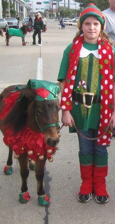 Elf Costume - The Horse Tailor