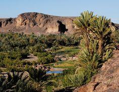 Fint Oasis near Ouarzazate
