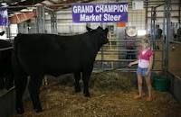 """county fair...not me, but could have been my """"Dynamite"""" from long ago :)"""