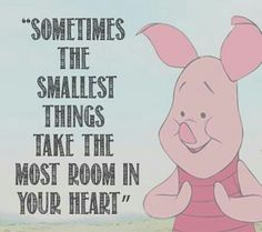 winnie the pooh quotes. Pooh Bear and his friends were quite the philosophers. Now Quotes, Great Quotes, Funny Quotes, Inspirational Quotes, Cute Quotes For Kids, Quotes Kids, Lyric Quotes, Movie Quotes, Winnie The Pooh Quotes