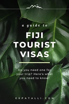 Are you planning to travel to Fiji? This guide gives you tips on what documents to prepare for your trip, what your tourist visa options are and more! #expatalli Best Honeymoon Spots, Travel To Fiji, Fly To Fiji, Visit Fiji, The Beautiful South, Backpacking Tips, Plan Your Trip, Travel Guides, Need To Know