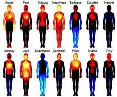 Emotion centers