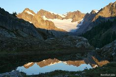Humes Glacier of Mount Olympus at sunrise - Olympic National Park