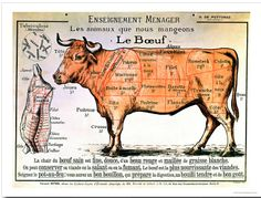 French School: Beef diagram depicting different cuts meat… Art Print Vintage Posters, Vintage Art, Art Posters, Vintage Food, Vintage Ephemera, Vintage Gifts, Vintage Metal, French School, Thing 1