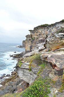 Australia Royal National Park - Wikipedia, the free encyclopedia