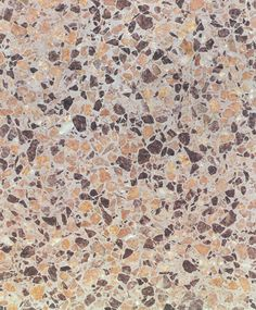D'Palma Bros. Terrazzo Samples  (Continued)  Our Samples Are Listed According to Our Own Company Codes. For Questions Contact Us. A Member of Our Staff is Happy to Assist You!   S-Series Terrazzo Samples   S-Series: Terrazzo Sample: S-327   S-Series: Terrazzo Sample: S-328   S-Series: Terrazzo Sample: S-329   S-Series: Terrazzo Sample: S-332   S-Series: Terrazzo Sample: S-333   S-Series: Terrazzo Sample: S-347   S-Series: Terrazzo Sample: S-353   S-Series: Terrazzo Sample: S-355…