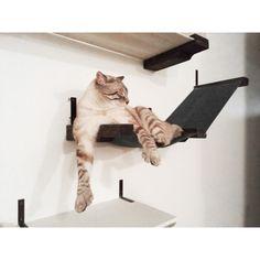Stretched Fabric Raceway Cat Wall Shelf