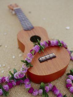 Ukelele on the beach :) Dear future Husband.. PLEASE play this! <3 I love them!!!!! lol