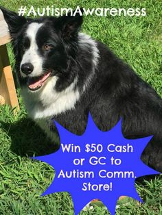 #AutismAwareness $50 Gift Certificate to the Autism Community Store or $50 Paypal Cash Giveaway! Enter now!