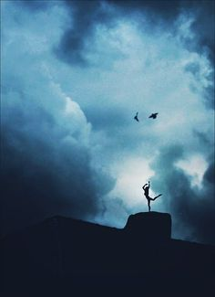 human, bird, sky
