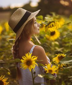 35 Most Popular Flower Wallpapers For Your Iphone Colorful Wallpaper,Flower Wallpaper,Landscape Wallpaper. Pictures With Sunflowers, Sunflower Field Pictures, Mini Sunflowers, Model Poses Photography, Senior Photography, Wild Sunflower, Sunflower Fields, Sunflower Field Photography, Most Popular Flowers