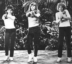 "Mrs. Howell, Maryann and Ginger dress up as the Honey Bees in the episode ""Don't Bug the Mosquitoes"" episode #12 from the second season episode ""Don't Bug the Mosquitoes"" Gilligan's Island"