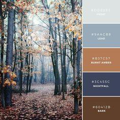 10. Nordic Woods  ベースに色あせた茶色と青色を利用した組み合わせ。2つの色を一緒に利用することで、男性的な(英:Masculine)イメージを演出でき、スタイリッシュな(英: Sophisticated)男性向けオーディエンスを対象にするときに。