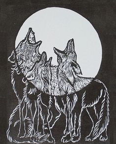 source unknown... #wolf #fullmoon