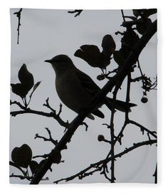 """Catbird Silhouette Fleece Blanket (50"""" x 60"""") by Karen Silvestri.  Our luxuriously soft throw blankets are available in two different sizes and feature incredible artwork on the top surface.  The bottom surface is white."""
