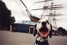 Londrada 100 Evsize Kamera Vermişler Çektikleri Fotoğraflar Karşısında Kelimeler Kifayetsiz http://goster.co/londrada-100-evsize-kamera-vermisler-ortaya-cikan-sonuc-karsisinda-kelimeler-kifayetsiz