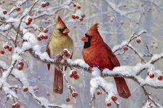 beth hoselton art   Northern Cardinals - Painting - Nature Art by Beth Hoselton