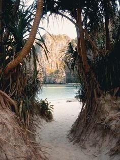 jungle scenery with white sand by the crystal blue ocean sea beach on a tropical island paradise like hawaii Dream Vacations, Vacation Spots, Beach Vacations, Vacation Style, Beach Travel, Places To Travel, Places To Visit, Travel Destinations, Beautiful Beaches