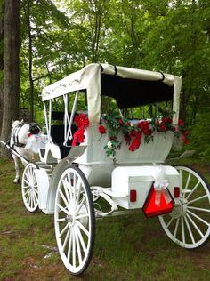 Cedar Knoll Farm - White vis-a-vis wedding carriage and red rose garland. http://www.cedarknoll.net