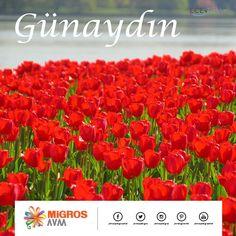Günaydın! Güzellilerle dolu güne ve yarınlara merhaba. :) #AntalyaMigrosAVM