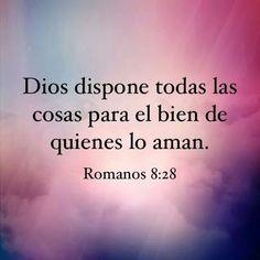 Dios dispone...