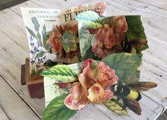Paper Pop, Garden Posts, Curiosity Shop, Pop Up, Floral Prints, Diy Crafts, Shapes, Flowers, Projects