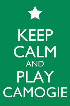 Irish Memes, Teen Girl Rooms, Sport Inspiration, Irish Blessing, Sport Quotes, Keep Calm, Best Quotes, Ireland, Football