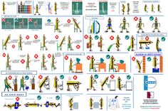Trx, Study Tips, Human Body, Education, Holiday Decor, Postural, Sierra, Ideas Para, Blog