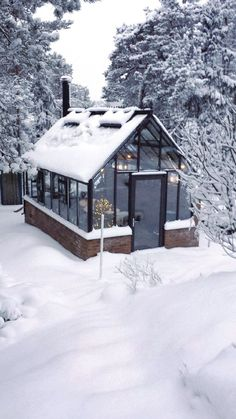 A warm solace filled with plants in the middle of winter :  .#garden #greenhouse #grenhouseplans #greenhousegardening #greenhouseideas #gardening #plant #panting