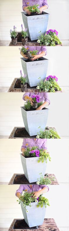 Planting an annual container garden with Carmen Johnston Gardens NOTE: some good tips for planting in a taller planter; Uses other pots to give height. Is a full sun arrangement.