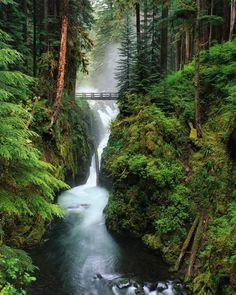 Immersed in Nature - Waterfall Bridge, Oregon.