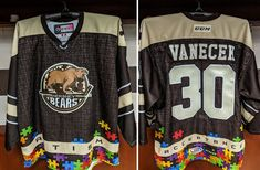 The Hershey Bears are committed to giving back to the community as a part of our Hershey Bears Cares initiative. American Hockey League, Hershey Bears, Acceptance, Community