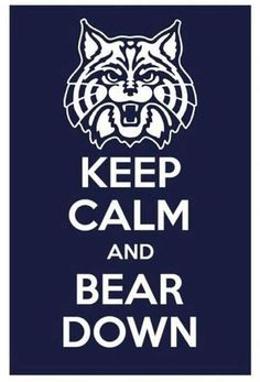 Keep Calm and Bear Down.