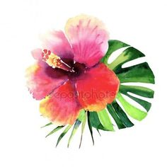 Beautiful Bright Lovely Wonderful Tropical Hawaii Floral Herbal Summer Colorful Composition Of Tropical Red Flower And Green Palms Stock Illustration - Illustration of botanical, isolated: 94473110 Red Flowers, Watercolor Flowers, Floral, Herbalism, Illustration Art, Artsy, Stock Photos, Green, Plants