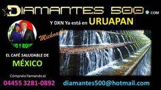 DXN Uruapan - Michoacan Diamantes 500