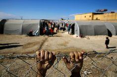 Aider les réfugiés et les migrants : Amnesty international World Refugee Day, Santa Sede, Syrian Children, Refugee Crisis, Refugee Camps, Amnesty International, Syrian Refugees, World Economic Forum, Books