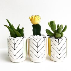 Arrow with Color Pots - Andrea Luna Reece - LunaReece.com