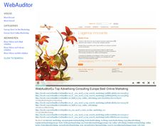 WebAuditorEu Top Advertising Consulting Europe Best Online Marketing - WebAuditor