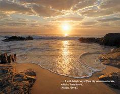Psalm 119 & 47