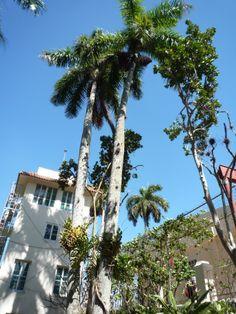 The watch-tower at La Finca Vigia, Cuba. Hemingway Cuba, Ernest Hemingway, Going To Cuba, Havana Cuba, Turks And Caicos, Cayman Islands, Grenadines, Grenada, Trinidad And Tobago