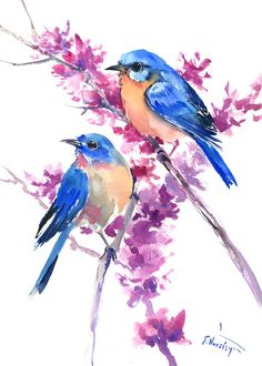 Bluebirds and Spring, artwork, original painting, watercolor, bluebird art, bluebird painting, bluebirds, two birds, love, blue pink by ORIGINALONLY on Etsy