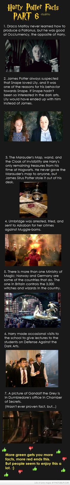 Harry Potter Facts Part 6 (Geek Stuff Hogwarts) Harry Potter World, Harry Potter Thema, Harry Potter Love, Harry Potter Universal, Harry Potter Fandom, Harry Potter Memes, Harry Potter Actors, Golden Trio, Severus Rogue